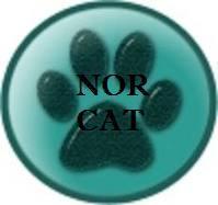 NorCat